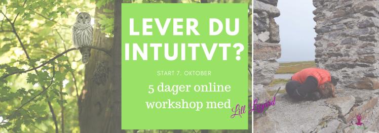 Lever du intuitivt? online workshop!.png
